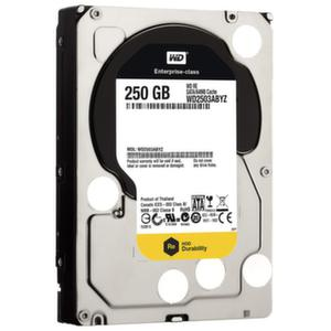 WD 250GB RE SATA III 7200 RPM 64 MB